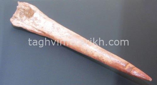 درفش-استخوانی---غار-یافتۀ-خرم-آباد-پارینه-سنگی-جدید-محل-نگهداری-وآرشیو-موزۀ-ملی-ایران